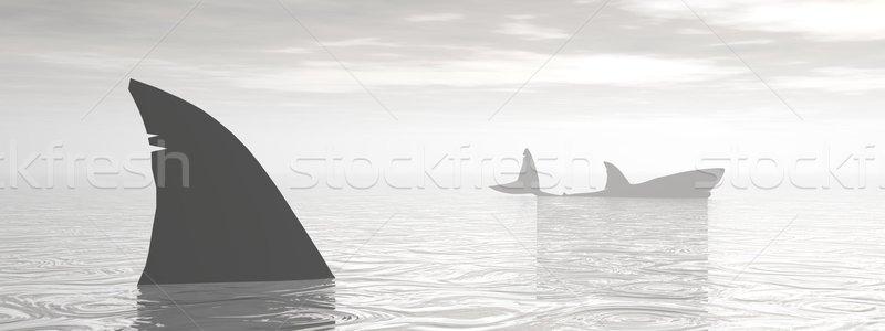 Haaien oceaan 3d render haai vin ander Stockfoto © Elenarts