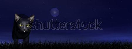 Fekete macska szemek 3d render sötét égbolt fű Stock fotó © Elenarts