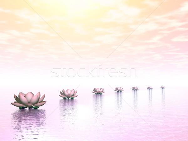 Stockfoto: Water · lelies · stappen · zon · 3d · render · mooie