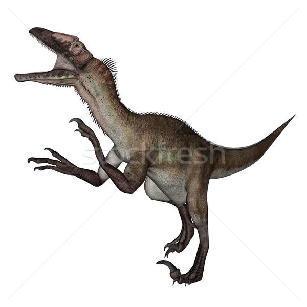 Utahraptor dinosaur roaring - 3D render Stock photo © Elenarts