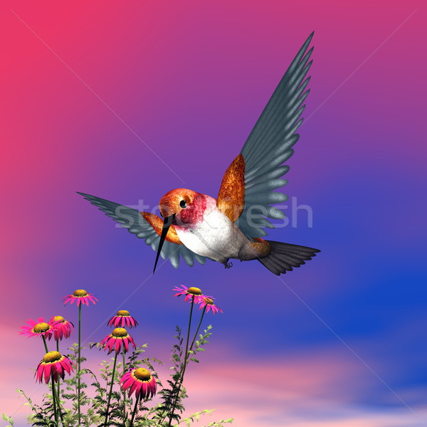 Hummingbird 3d визуализации Flying красный Ромашки облачный Сток-фото © Elenarts