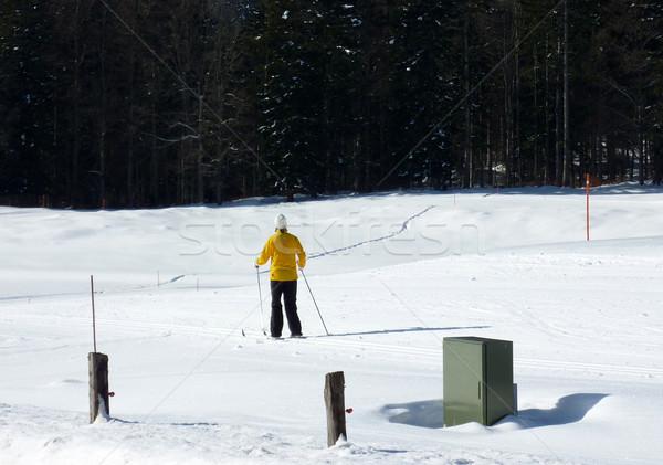 çapraz ülke kayakçı sarı kat Stok fotoğraf © Elenarts