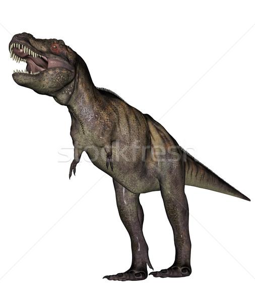 Tyrannosaurus dinosaur Stock photo © Elenarts