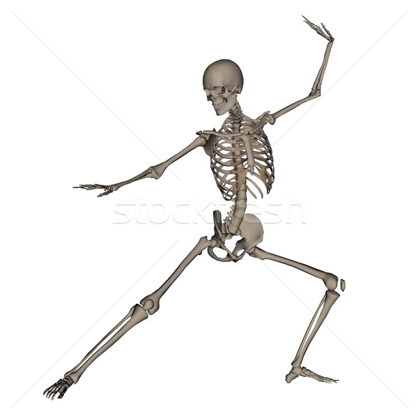 Human skeleton ready to fight - 3D render Stock photo © Elenarts