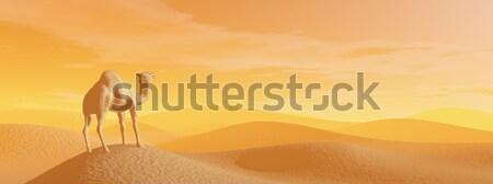 Teve sivatag 3d render áll naplemente fény Stock fotó © Elenarts