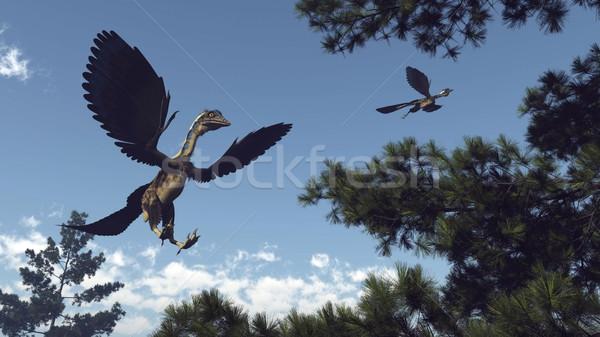 Vogels vliegen 3d render pine bomen Stockfoto © Elenarts