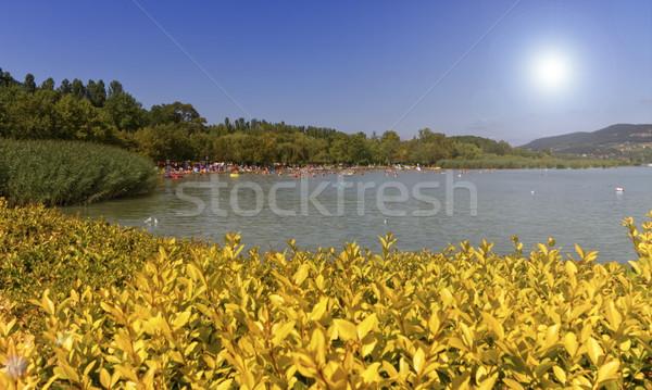 Jezioro piękna lata dzień plaży niebo Zdjęcia stock © Elenarts