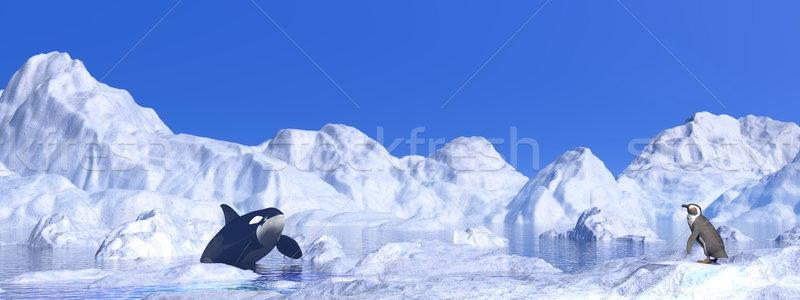 Megbeszélés 3d render pingvin gyönyörű nap égbolt Stock fotó © Elenarts