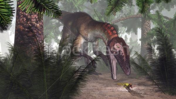 恐竜 狩猟 ヤモリ 3dのレンダリング 森林 植物 ストックフォト © Elenarts
