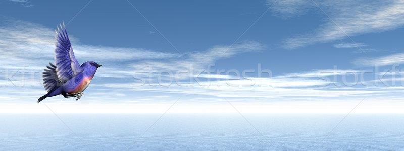 Finch bird upon ocean - 3D render Stock photo © Elenarts