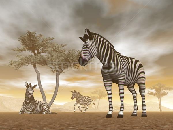 Zebras in the savannah - 3D render Stock photo © Elenarts