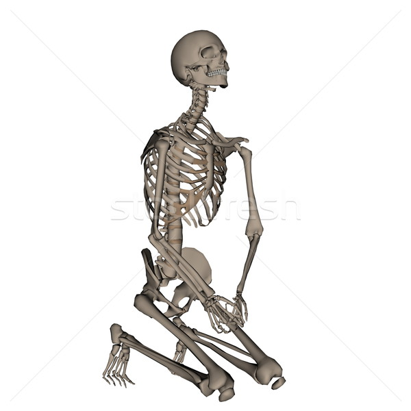 Human skeleton praying on his knees - 3D render Stock photo © Elenarts