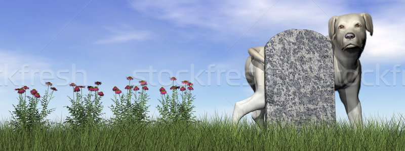Tombstone with labrador dog - 3D render Stock photo © Elenarts