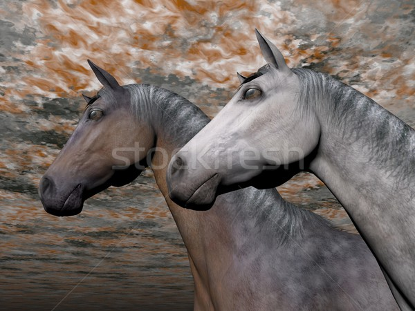 Portrait of two horses - 3D render Stock photo © Elenarts