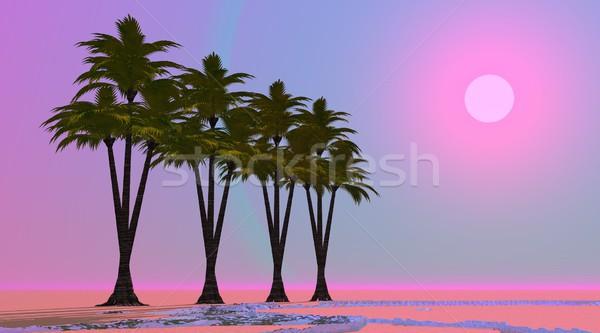 Violette oasis quatre palmiers désert peu Photo stock © Elenarts