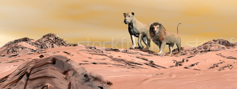 Couple of lions in the desert - 3D render Stock photo © Elenarts