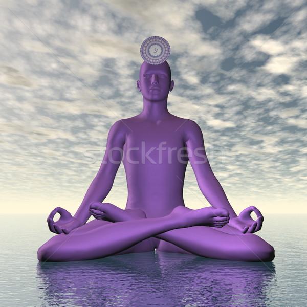 バイオレット 紫色 クラウン チャクラ 瞑想 3dのレンダリング ストックフォト © Elenarts