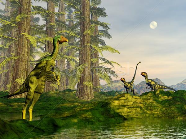 Caudipteryx and dilong dinosaurs - 3D render Stock photo © Elenarts