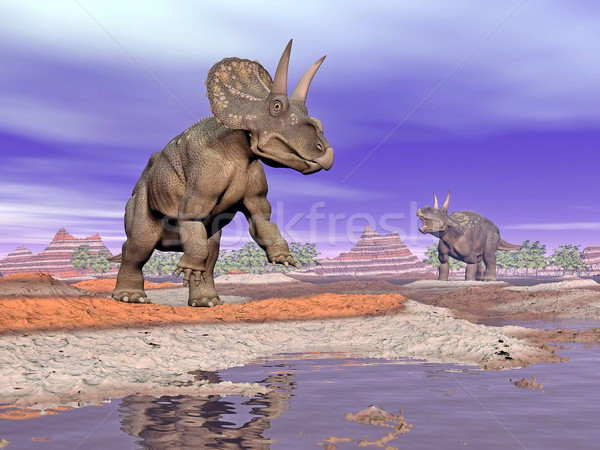 Diceratops dinosaurs in nature - 3D render Stock photo © Elenarts