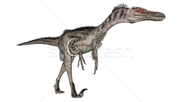 Dinozor 3d render yürüyüş yalıtılmış beyaz doğa Stok fotoğraf © Elenarts
