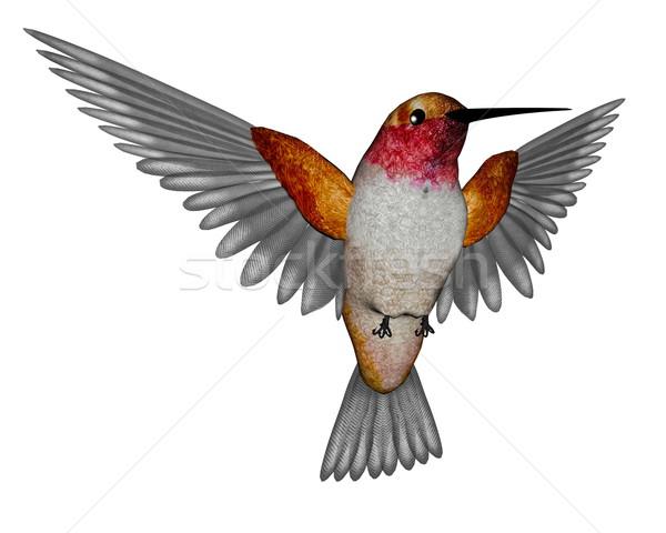 Hummingbird 3d визуализации изумруд Flying изолированный белый Сток-фото © Elenarts