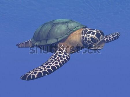 Mare tartaruga rendering 3d bella nuoto Ocean Foto d'archivio © Elenarts