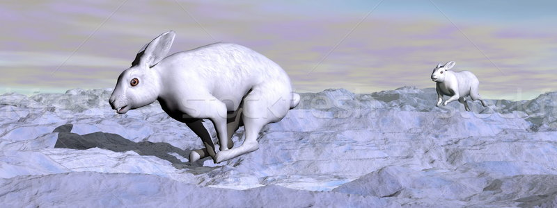 Arctic hares - 3D render Stock photo © Elenarts