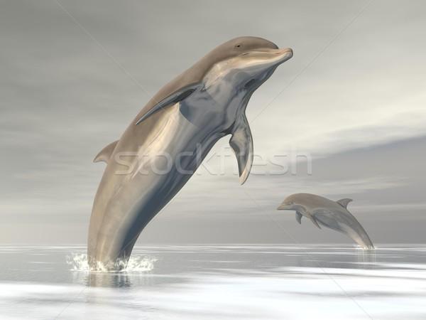 Wolności delfiny 3d dwa skoki ocean Zdjęcia stock © Elenarts