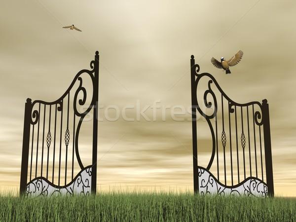 Foto stock: Abrir · portão · natureza · 3d · render · um · vintage