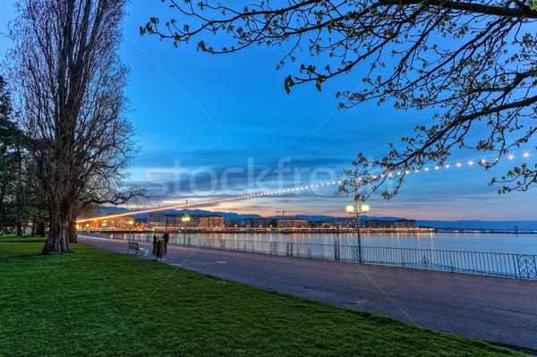 Inglês jardim passeio público Suíça hdr Foto stock © Elenarts