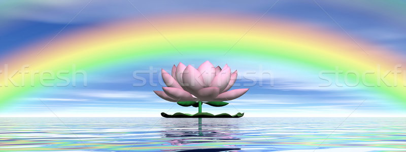 Lotus flower under rainbow - 3D render Stock photo © Elenarts