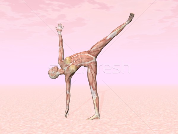 Half moon yoga pose for woman with muscle visible Stock photo © Elenarts