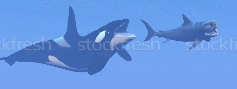 убийца кит небольшой акула 3d визуализации подводного Сток-фото © Elenarts