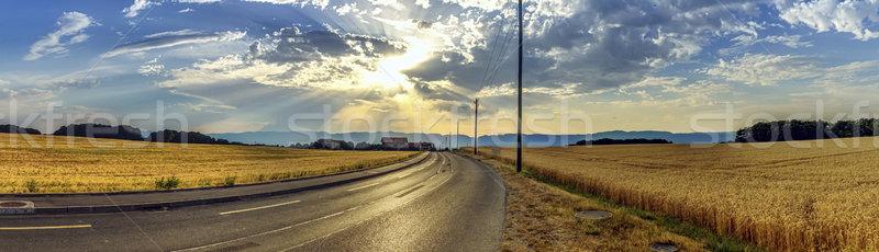 Estrada montanha Suíça hdr Foto stock © Elenarts