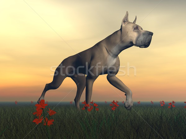 Great dane dog - 3D render Stock photo © Elenarts