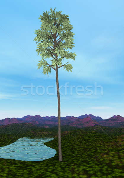 Cordaites tree - 3D render Stock photo © Elenarts