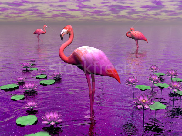 Flamingos and water lilies - 3D render Stock photo © Elenarts