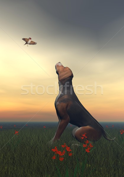 Black tan dog and butterfly - 3D render Stock photo © Elenarts