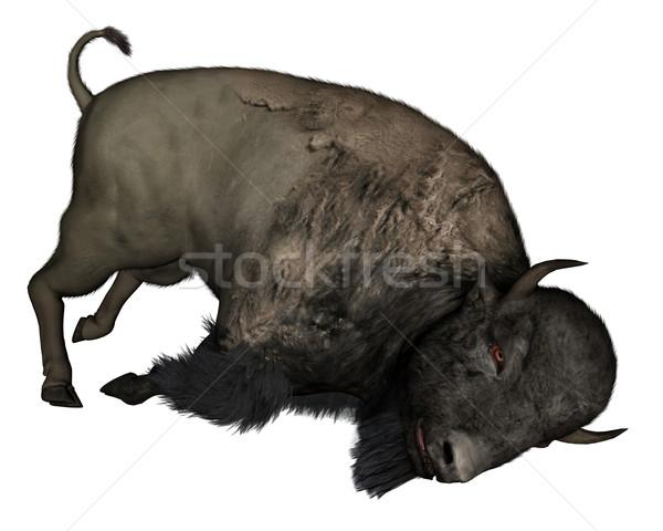 Bison dead - 3D  render Stock photo © Elenarts