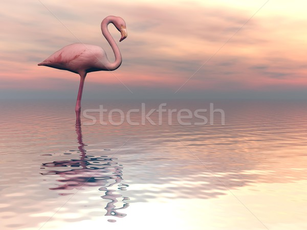 Paisible rendu 3d une Flamingo permanent seuls Photo stock © Elenarts