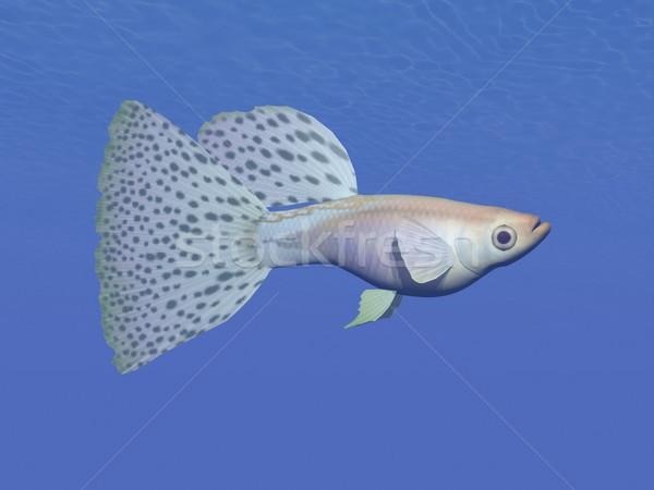 Azul peces subacuático 3d uno natación Foto stock © Elenarts