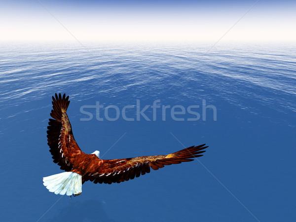Eagle freedom - 3D render Stock photo © Elenarts