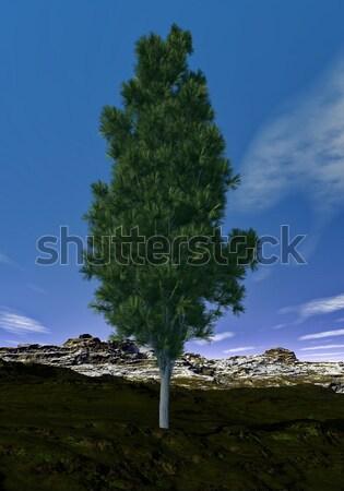 Pino 3d montana día madera naturaleza Foto stock © Elenarts