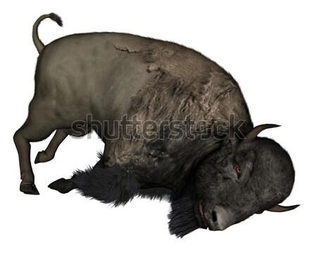 Bison head down - 3D render Stock photo © Elenarts