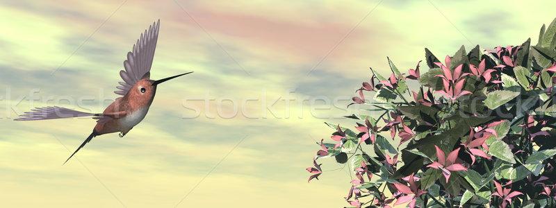Beija-flor flores 3d render voador pôr do sol flor Foto stock © Elenarts