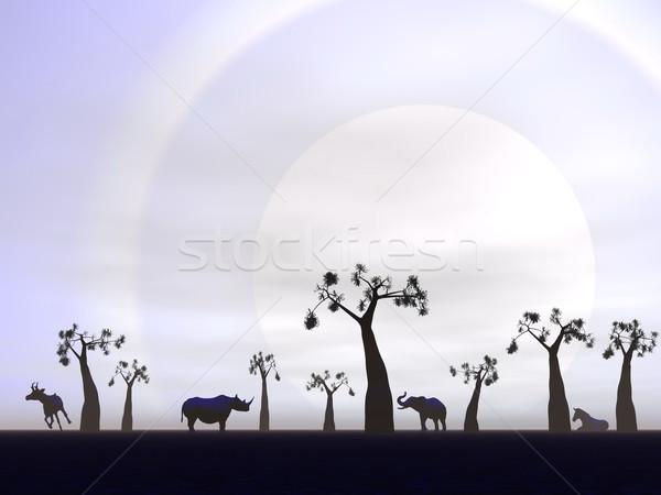 саванна декораций закат Тени животные небе Сток-фото © Elenarts