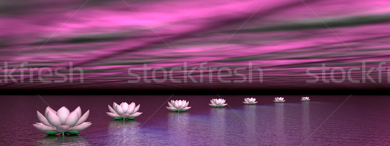 Water lilies steps to the sun - 3D render Stock photo © Elenarts