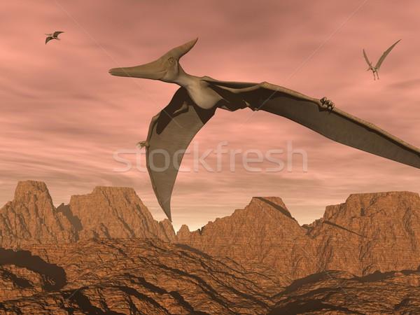 恐竜 飛行 3dのレンダリング 3  風景 日没 ストックフォト © Elenarts
