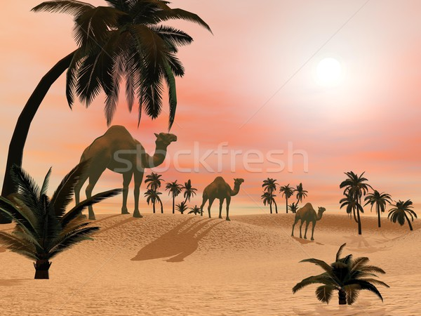 Stock photo: Camels in the desert - 3D render