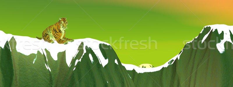 Tiger on snowy mountain Stock photo © Elenarts
